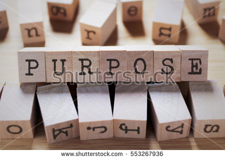 Know Your Purpose|Know Your Role