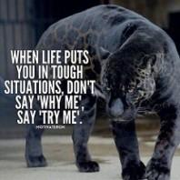 motivation 4